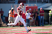 FAYETTEVILLE, AR - OCTOBER 25:  Toby Baker #37 of the Arkansas Razorbacks punts the ball against the UAB Blazers at Razorback Stadium on October 25, 2014 in Fayetteville, Arkansas.  The Razorbacks defeated the Blazers 45-17.  (Photo by Wesley Hitt/Getty Images) *** Local Caption *** Toby Baker