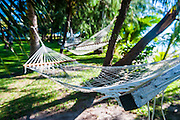 Hammock on the beach of the SafeLanding resort, Nacula island, Yasawas, Fiji, South Pacific