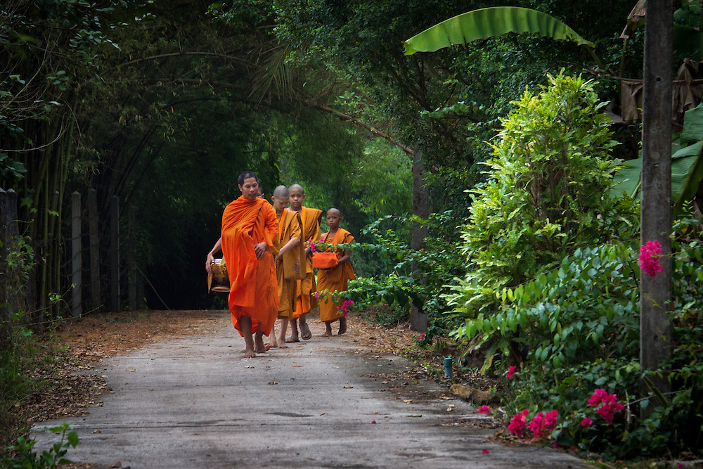 Young Novice Monks First Walk for Alms in  Rural Nakhon Nayok, Thailand.