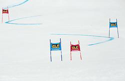 7th Ladies' Giant slalom at 52nd Golden Fox - Maribor of Audi FIS Ski World Cup 2015/16, on January 30, 2016 in Pohorje, Maribor, Slovenia. Photo by Vid Ponikvar / Sportida