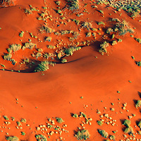 Africa, Namibia, Sossusvlei. Aerial view of red dunes and grasses of the NamibRand Nature Reserve by hot air balloon.