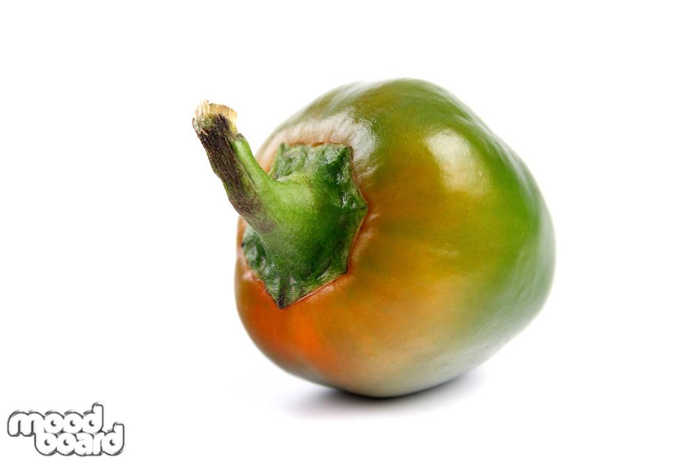 Studio soht of green chilli pepper