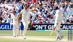 Australia's Mitchell Starc celebrates the wicket of England's Craig Overton during day five of the Ashes Test match at the Adelaide Oval, Adelaide.