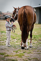 JEROME A. POLLOS/Press..Sam Cope, 6, works with his horse before showing her in the halter event Friday at the North Idaho Fair Open Horse Show.