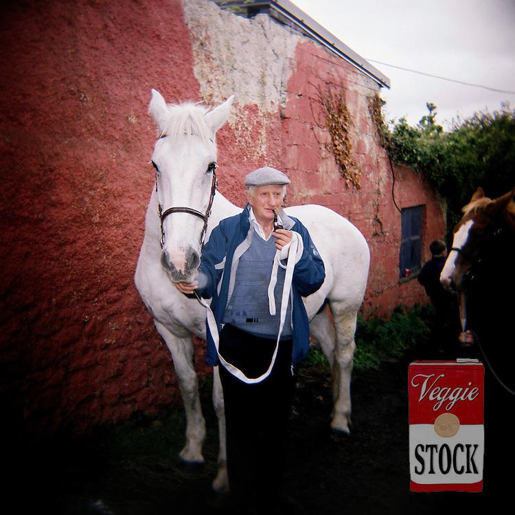 Ballinasloe Horse Fair, Co. Galway, Ireland, October 2010.