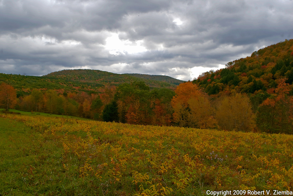 """Cat Hollow""-An image of Cat Hollow, a valley in the Catskill Mountains of New York in autumn."