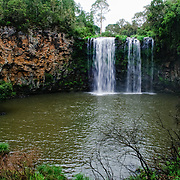 Dangar Falls near Dorrigo in north central New South Wales on Waterfall Way