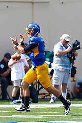 September 24, 2011; San Jose, CA, USA;  San Jose State Spartans quarterback Matt Faulkner (7) celebrates after throwing a touchdown pass against the New Mexico State Aggies during the third quarter at Spartan Stadium. San Jose State defeated New Mexico State 34-24.