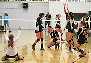 Springville's Sarah Matus (44), Tracy Kilburg (3), Leanna Mysak (9), Sidney Hopkins (20), and Ashley Brady (21) celebrate after the final point in the Class 1A regional final match at Iowa City West High School in Iowa City on Wednesday, November 6, 2013. Springville defeated New London 3-2.