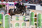 Fredrik Spetz - Dustin<br /> Gothenburg Horse Show 2019<br /> © DigiShots