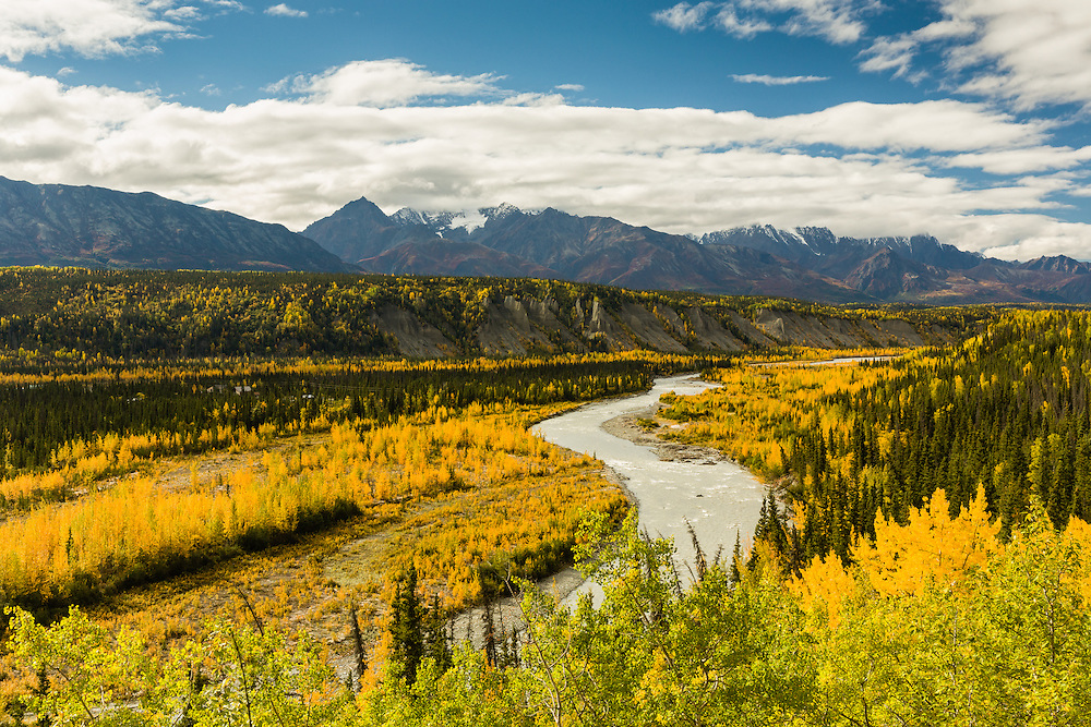 Yellows in the valley and reds in the Chugach Mountains adorn the Matanuska River and valley in autumn in Southcentral Alaska. Afternoon.