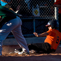 060313     B rian Leddy <br /> The Orioles Robert Gallegos slides safely into home during Monday nights game against the Athletics at Ford Canyon Park.