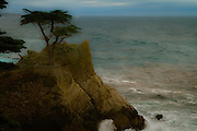A color enhanced version of the famous Lone Cypress at Pebble Beach as the unsettled Sea swirls below