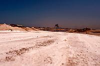 Il complesso produttivo delle saline è situato nel comune italiano di Margherita di Savoia (nome dato dagli abitanti in onore alla regina d'Italia che molto si adoperò nei confronti dei salinieri) nella provincia di Barletta-Andria-Trani in Puglia. Sono le più grandi d'Europa e le seconde nel mondo, in grado di produrre circa la metà del sale marino nazionale (500.000 di tonnellate annue).All'interno dei suoi bacini si sono insediate popolazioni di uccelli migratori e non, divenuti stanziali quali il fenicottero rosa, airone cenerino, garzetta, avocetta, cavaliere d'Italia, chiurlo, chiurlotello, fischione, volpoca..Particolare della rampa utilizzata per l'estrazione del sale ; sull'orrizzonte è presente il carroponte