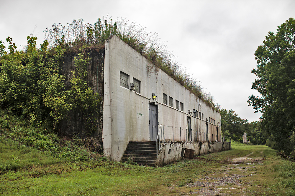Bunker at the Tulane University Biodiversity Research Institute.