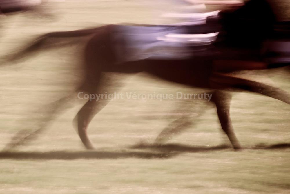 The waves were coming in like Arabian stallions, 2015<br /> <br /> S&eacute;rie &quot;surrounded bt horses&quot;<br /> Inspir&eacute; par Land, album Horses de Patti Smith<br /> <br /> 20 cm x  30 cm<br /> Tirage pigmentaire sur papier Hahnem&uuml;hle baryt&eacute;<br /> Edition de 3 exemplaires<br /> <br /> me contacter v.durruty@gmail.com<br /> <br /> autres formats disponibles.