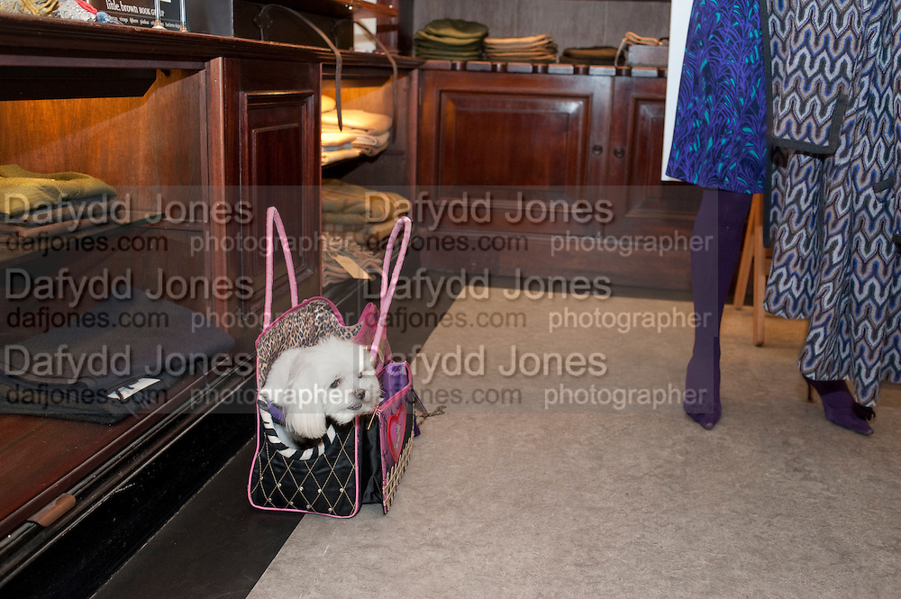 BONNIE MOONEY;  , Judith Watt's Dogs in Vogue BOOK LAUNCH. James Purdey and Sons. 57-58 S. Audley St. London.
