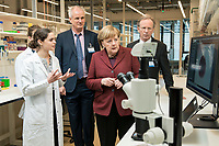 """26 FEB 2019, BERLIN/GERMANY:<br /> Angela Merkel (R),  CDU, Bundeskanzlerin, laesst sich von Zoe Mendelsohn (L), Doktorandin aus dem Labor von Nikolaus Rajewsky ein """"Mini-Gehirn"""" (Organoid) in der Petrischale unter dem Mikroskop zeigen, (im Hintergrund Prof. Dr. Nikolaus Rajewsky (L) und Prof. Dr. Martin Lohse (R)), waehrend einem Rundgang der Kanzlerin durch das Labor anl. der Eroeffnung des zweiten Standorts des Max-Delbrueck-Centrums fuer Molekulare Medizin (MDC) in Berlin-Mitte<br /> IMAGE: 20190226-01-0<br /> KEYWORDS: Max-Delbrück-Centrum"""