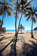 Beach and palm trees at Horseshoe Bay, Magnetic Island, Queensland, Australia.