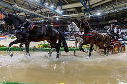 HARM Mareike (GER), Tulipan Allegra Xxxiv-4, El Chico, Luxus Boy, Quebec Sautreuil, Zazou<br /> Stuttgart - German Masters 2019<br /> Preis der Firma iWEST<br /> Einlaufprüfung für den FEI WORLD CUP™ DRIVING 2019/2020<br /> Int. Zeit-Hindernisfahren für Vierspänner mit zwei unterschiedlichen Umläufen CAI-W<br /> 15. November 2019<br /> © www.sportfotos-lafrentz.de/Stefan Lafrentz