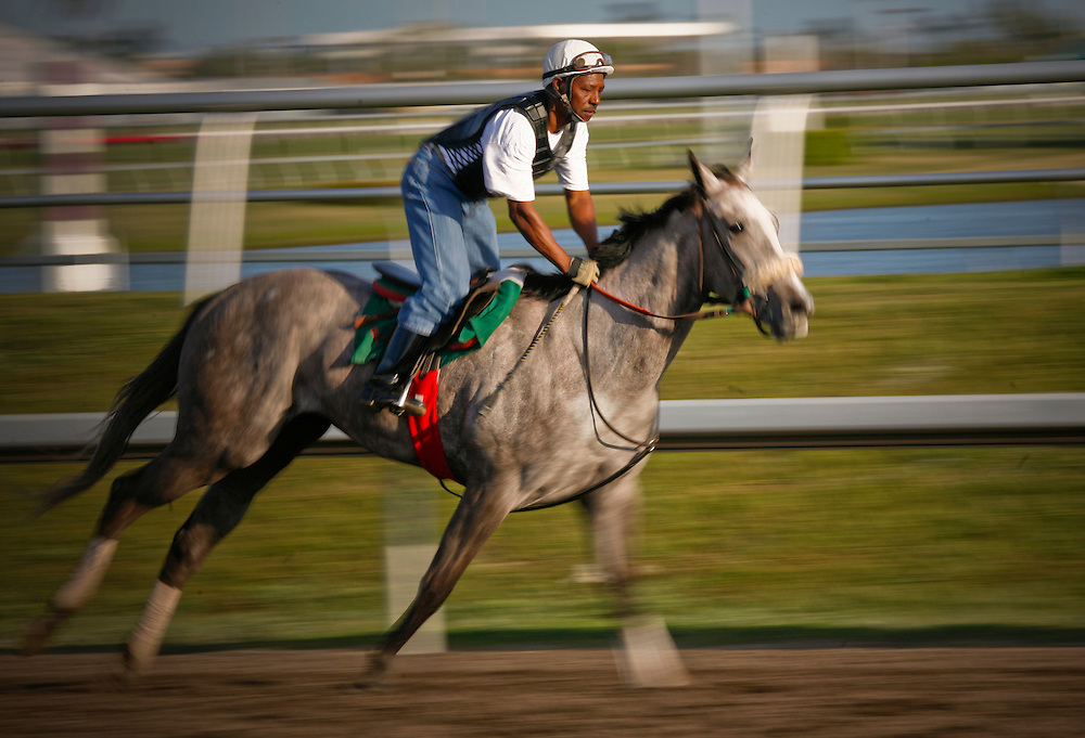 Horses were worked just after sunrise at Gulfstream Park Racing and Casino, Hallandale FL. on  Feb 24, 2007.  (Photo/Lance Cheung) ..PHOTO COPYRIGHT 2007 LANCE CHEUNG.This photograph is NOT within the public domain..This photograph is not to be downloaded, stored, manipulated, printed or distributed with out the written permission from the photographer. .This photograph is protected under domestic and international laws.