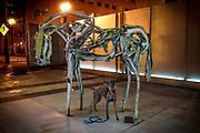 Sugar posing with sculpture of horse by Montana artist Deborah Butterfield at the Portland Art Museum