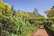 Borders, a pergola and path in the Quinta do Palheiro Ferriro (Blandy's) Garden near Monte, Madeira, Portugal