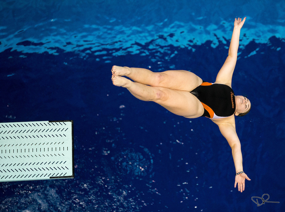 A University of Tennessee diver leaves the springboard during a team practice at the UT Aquatic Center.