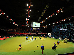 © Licensed to London News Pictures. 11/03/2012. The main arena at the 2012 Crufts final in the Birmingham NEC Arena.  With over 28,000 dogs taking part the tension is high as the competition draws towards the prestigious title of  Best in Show. Photo credit: Alison Baskerville/LNP