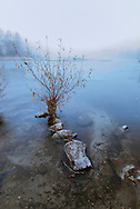 Bitterroot River, winter, fog, near Hamilton, Montana