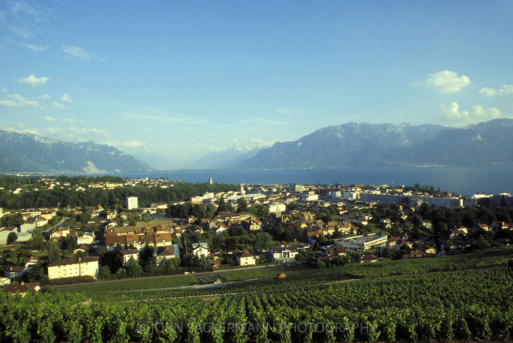 CHE, Switzerland, view to Vevey at Lake Geneva.....CHE, Schweiz, Blick ueber Vevey am Genfer See.........