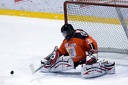 Goalkeper Gaber Glavic (30) at ice hockey match Acroni Jesencie vs EC Red Bull Salzburg in EBEL League,  on November 23, 2008 in Arena Podmezaklja, Jesenice, Slovenia. (Photo by Vid Ponikvar / Sportida)