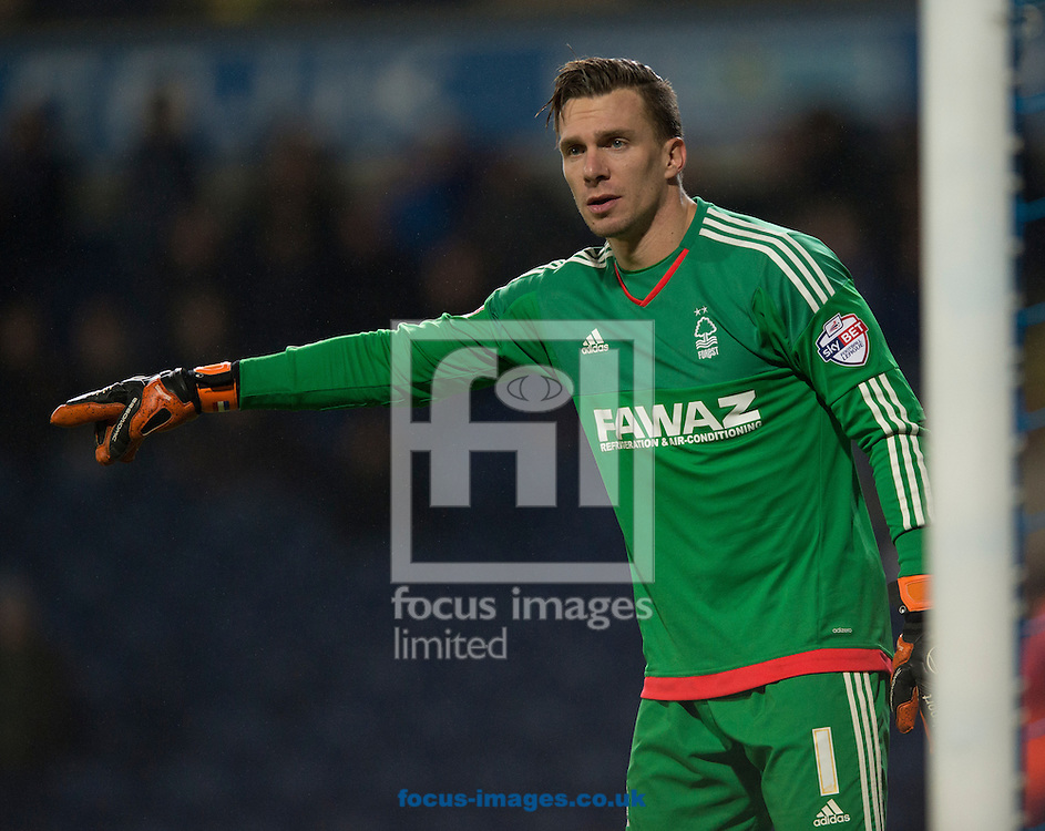 Nottingham Forest goalkeeper Dorus de Vries during the Sky Bet Championship match at Ewood Park, Blackburn<br /> Picture by Russell Hart/Focus Images Ltd 07791 688 420<br /> 14/12/2015