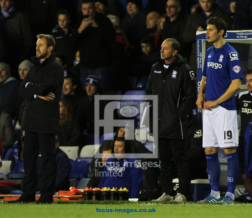 Birmingham City manager Gary Rowett (left) and Nikola Žigić (right) of Birmingham City during the Sky Bet Championship match at St Andrews, Birmingham<br /> Picture by Tom Smith/Focus Images Ltd 07545141164<br /> 13/12/2014