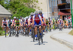 Team Adria Mobil during Stage 4 from Brezice to Novo mesto (155,8 km) of cycling race 20th Tour de Slovenie 2013,  on June 16, 2013 in Slovenia. (Photo By Vid Ponikvar / Sportida)