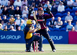Tom Banton of Somerset appeals as David Lloyd of Glamorgan is hit in the pads<br /> <br /> Photographer Simon King/Replay Images<br /> <br /> Vitality Blast T20 - Round 1 - Glamorgan v Somerset - Thursday 18th July 2019 - Sophia Gardens - Cardiff<br /> <br /> World Copyright © Replay Images . All rights reserved. info@replayimages.co.uk - http://replayimages.co.uk
