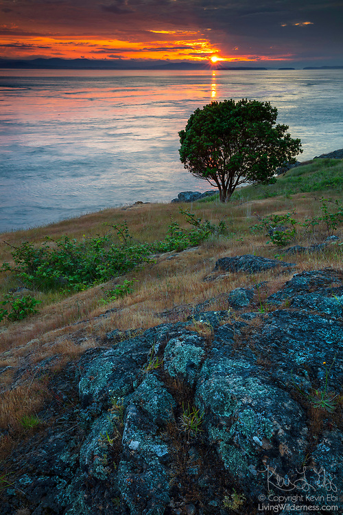 The golden glint from the setting sun stretches across Haro Strait from Vancouver Island to Westside Preserve on San Juan Island, Washington.