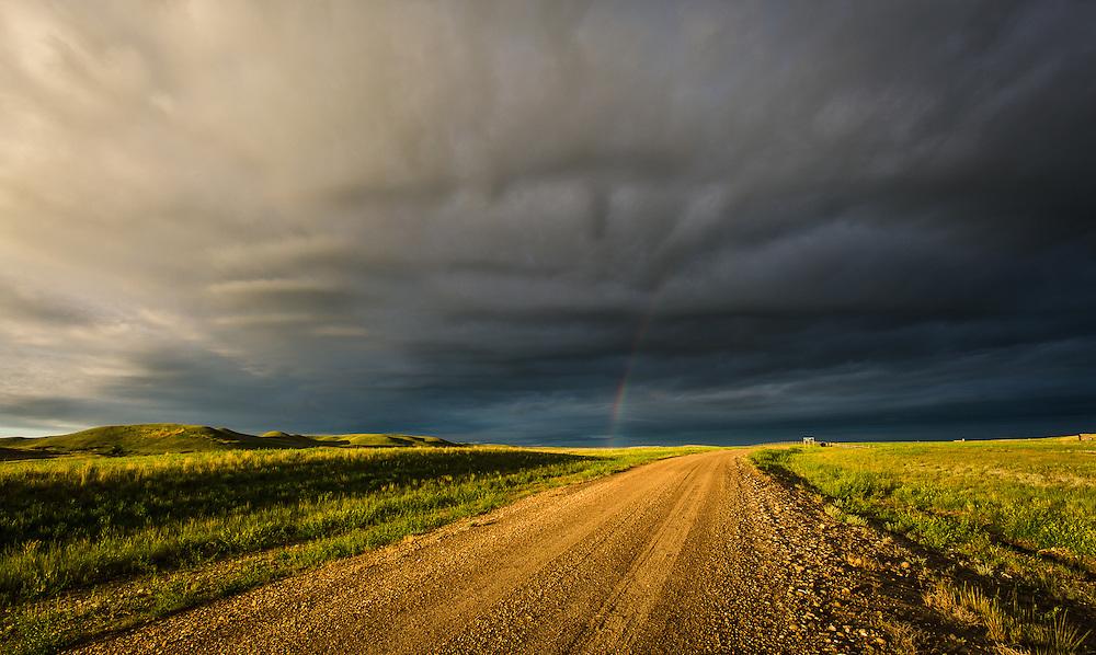 Early Summer in Saskatchewan, June 2014