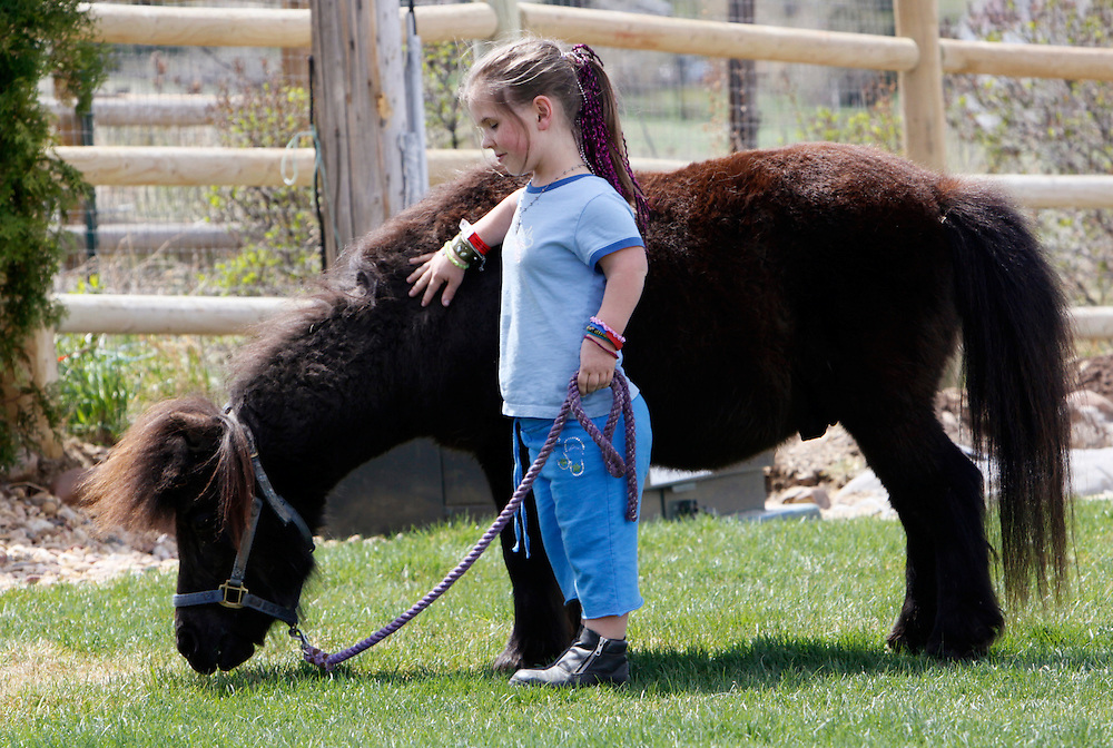 Katie Haynes, 13 and a little person stands with a miniature horse at a meeting of the Little People of America (LPA) Front Range Chapter in Boulder, Colorado April 24, 2010.  The LPA is a nonprofit organization that provides support and information to people of short stature and their families. REUTERS/Rick Wilking (UNITED STATES)