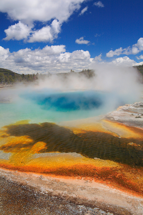 High Steaming Geyser Pool And Cyanobacteria - Yellowstone National Park