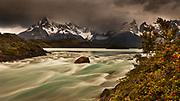 Rainstorm engulfs Cuernos del Paine peaks, Lago Pehoe rapids, 'Seven shirts - siete camisas colorado'  in flower (Escallonia rubra) , Parque Nacional Torres del Paine, Patagonia, Chile.