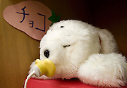 PARO (Seal-like healing Robot) named &ldquo;Choko&rdquo; resting and recharging at it&rsquo;s cupboard-house at the &ldquo;Toyoura&rdquo; nursing home. PARO has already sold 500 pieces in Japan from which 80% went to individual people and the rest to nursing homes.  In 2002 it won its place at the &ldquo;Guinness Book of Records&rdquo; as &ldquo;The Most Therapeutic Robot&rdquo;.<br /> http://www.paro.jp/english/index.html - TOKYO  20/4/2005
