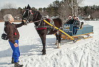 """Connie Moses and """"Gilford"""" a 9 year old Arab Percherom wait while Bob and Marilyn Bolduc hop on board the 1895 wooden sleigh with Rick Moses to go a ride around the trails at Bolduc Park Monday morning.   (Karen Bobotas/for the Laconia Daily Sun)"""