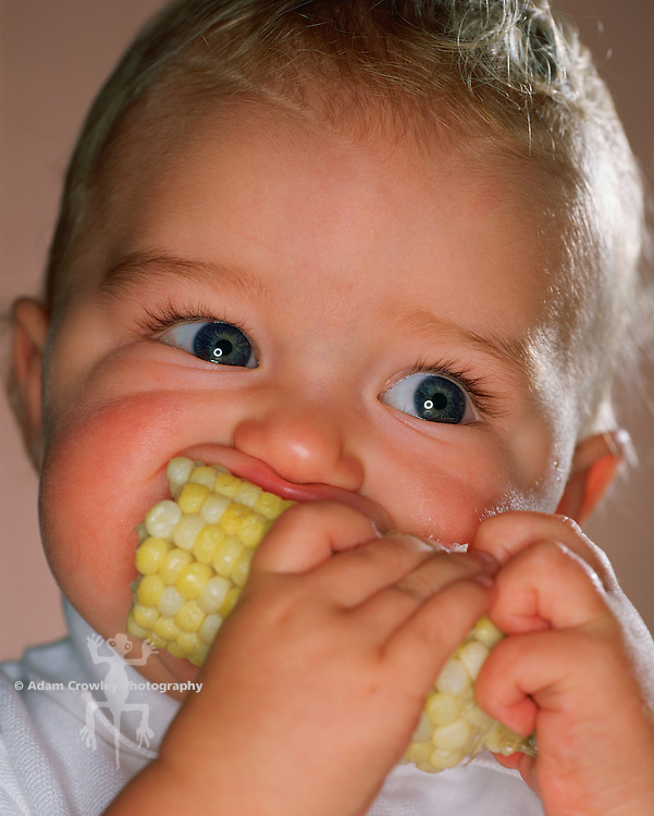 One year old boy eats corn on the cob.