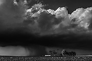 A small storm moves across Peoria County farm fields in Illinois.