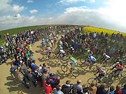 Paris Roubaix Classic. 2014