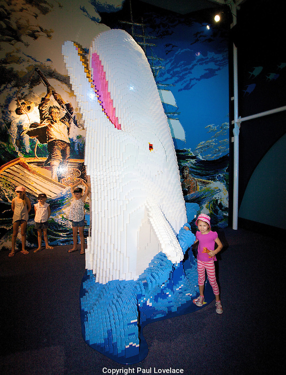 """Sydney Aquarium and Sydney Wildlife World have opened a new million-dollar LEGO exhibit, housing Australia's largest collection of super-sized LEGO models. ..The LEGO models ON THE LOOSE exhibit has been almost two years in the making and features 25 giant LEGO models made up of over 1.5 millions LEGO bricks! The world-class exhibit has been created by LEGO Master Builders in the US and Prague and has taken over 10,000 man-hours to complete...The mysteries of the deep have surfaced at Sydney Aquarium including a massive LEGO Moby Dick made from more than 365,000 DUPLO® bricks and Neptune made up of 304,500 LEGO bricks alongside Mermaid, Scuba Diver and a totally jaw-dropping 6.4 metre Great White Shark...Above water, it's Aussie animals, Aussie legends, outback explorers and more at Sydney Wildlife World. Behold the Giant Drover on Horseback - four metres tall and built from over 90,000 bricks, Burke and Wills with camel, a Water Buffalo standing over 2.4 metres tall and huge Aussie icons like our very own Boxing Kangaroo. ..Kids can also express their creativity at the free LEGO play room in Sydney Wildlife World and will receive a world exclusive LEGO Minifigure (while stocks last)...Until today visitors were also able to participate in the Mega Mural - the biggest interactive LEGO event the world has seen to help raise money for Autism Spectrum Australia (ASPECT)...Sydney Attractions Group, Director Sales and Marketing, Michael McKeon said, """"We're extremely excited to be opening ON THE LOOSE. We've combined one the world's leading toy brands with Australia's favourite family attractions to create an exhibit spectacular in both scale and creativity. The models are magnificent!""""..Moby Dick made from 365,420 bricks"""