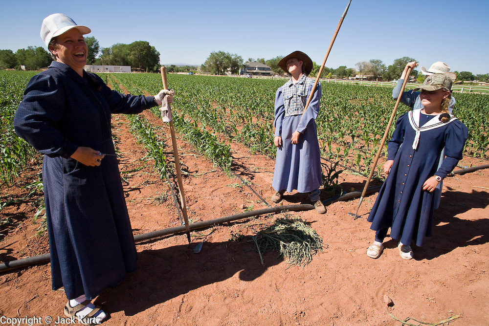 "June 16, 2008 -- COLORADO CITY, AZ: Women and girls in the Jessop family relax in the community corn plot in Colorado City, AZ. The Jessops are a polygamous family and members of the FLDS. Colorado City and neighboring town of Hildale, UT, are home to the Fundamentalist Church of Jesus Christ of Latter Day Saints (FLDS) which split from the mainstream Church of Jesus Christ of Latter Day Saints (Mormons) after the Mormons banned plural marriage (polygamy) in 1890 so that Utah could gain statehood into the United States. The FLDS Prophet (leader), Warren Jeffs, has been convicted in Utah of ""rape as an accomplice"" for arranging the marriage of teenage girl to her cousin and is currently on trial for similar, those less serious, charges in Arizona. After Texas child protection authorities raided the Yearning for Zion Ranch, (the FLDS compound in Eldorado, TX) many members of the FLDS community in Colorado City/Hildale fear either Arizona or Utah authorities could raid their homes in the same way. Older members of the community still remember the Short Creek Raid of 1953 when Arizona authorities using National Guard troops, raided the community, arresting the men and placing women and children in ""protective"" custody. After two years in foster care, the women and children returned to their homes. After the raid, the FLDS Church eliminated any connection to the ""Short Creek raid"" by renaming their town Colorado City in Arizona and Hildale in Utah. The Jessops are a polygamous family and members of the FLDS.     Photo by Jack Kurtz"