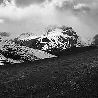 Alpine Dreams: The Wild Part 3
