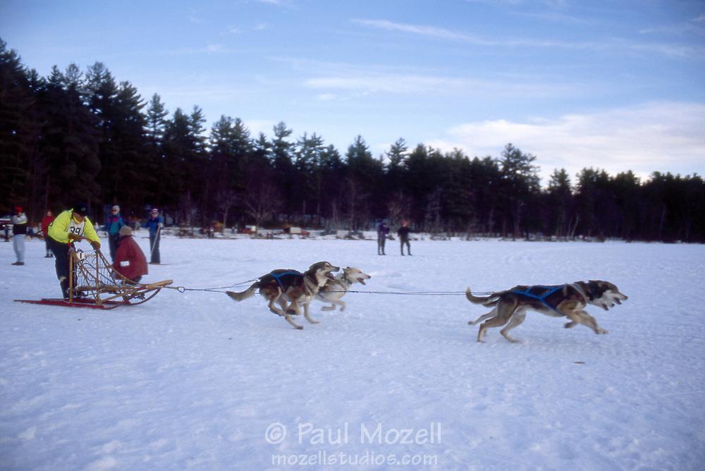 Dog sled racing on Lake Chororua, New Hampshire